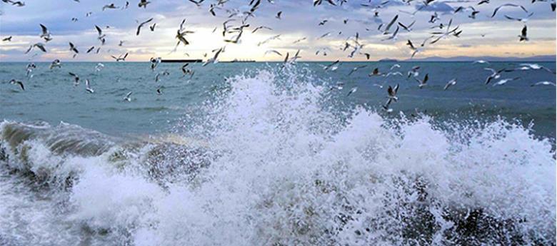 istanbul lodos fırtına ile ilgili görsel sonucu